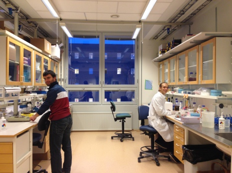 4. Then there was light (Jan 2014 GS started the lab as a PhD student).JPG